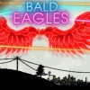 Bald_Eagles_Banner1